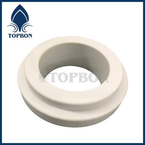 TB-C4 ceramic seal ring