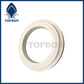TB-C5 ceramic seal ring