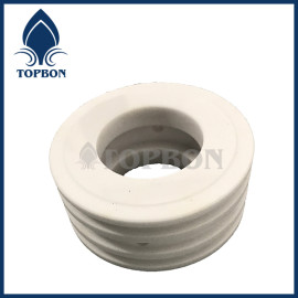 TB-C8 ceramic seal ring